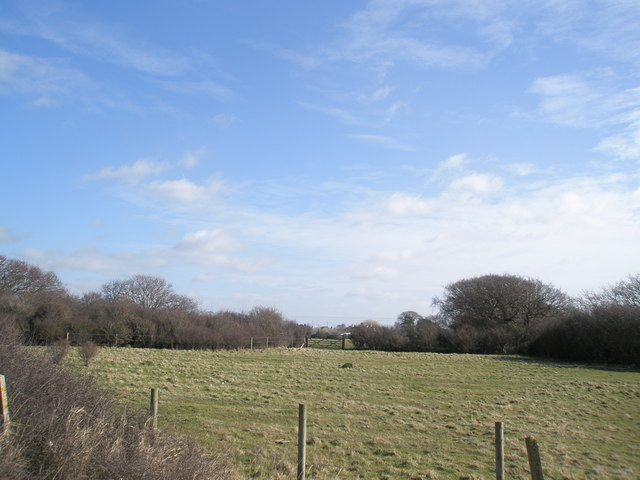 Looking from the Hayling Billy path across to the Havant Road