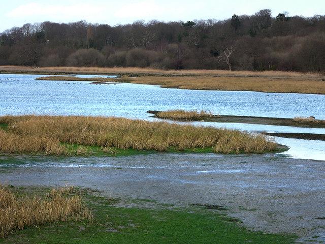 View across Bunny Meadows
