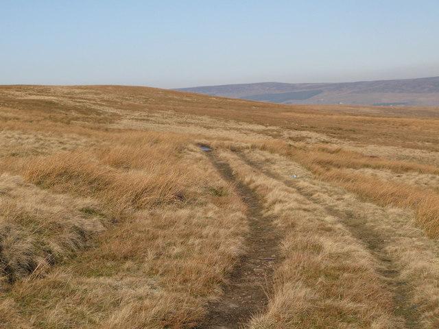 Track on Harthope Moor (2)