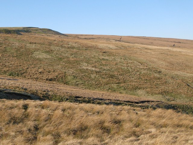 Moorland below the disused quarry at Harthope Head (2)