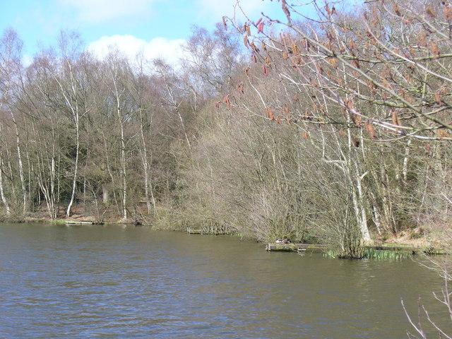Pond, Slaugham Common