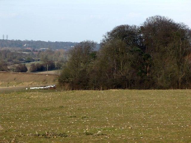 Railway embankment from Six Bridges to Cuckoo Wood