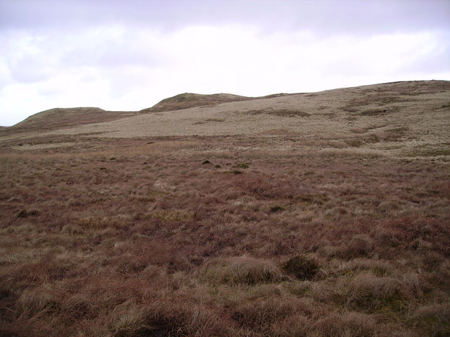 Archer Hill