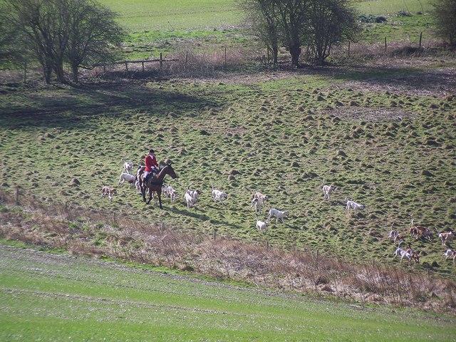 Hounds moving off near Vernditch