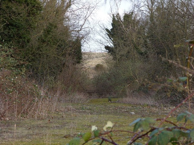 Overgrown entrance to former Norwich City Rubbish Dump