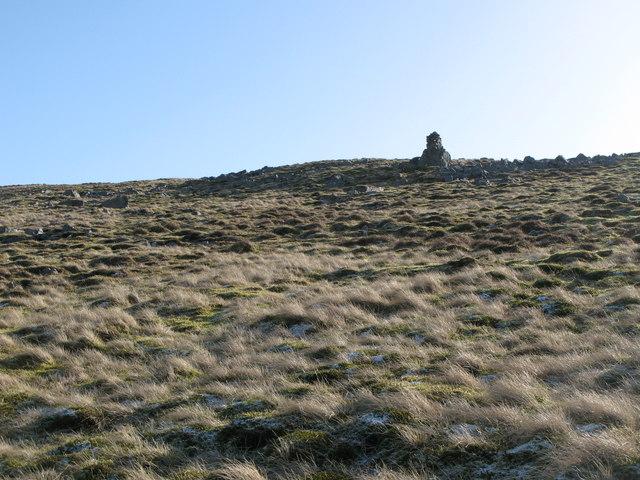 Currick on Chapel Fell (2)