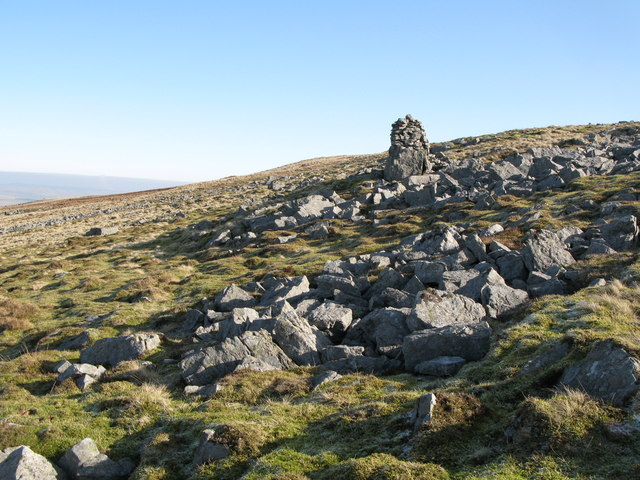 Currick on Chapel Fell (3)