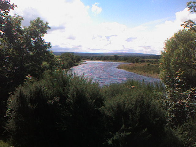 River Spey near Fochabers