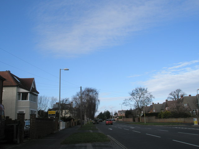 Looking eastwards down Hollow Lane