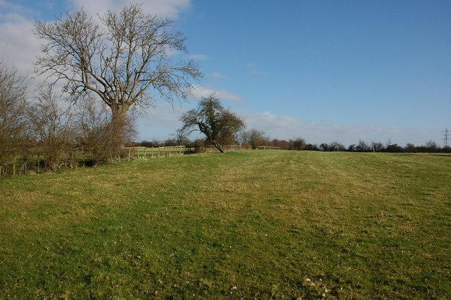 Farmland at Walton Cardiff