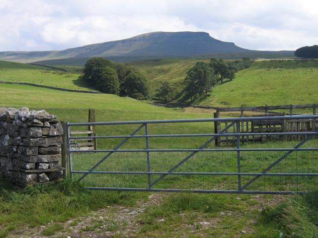 Gate near Scalabers Barn