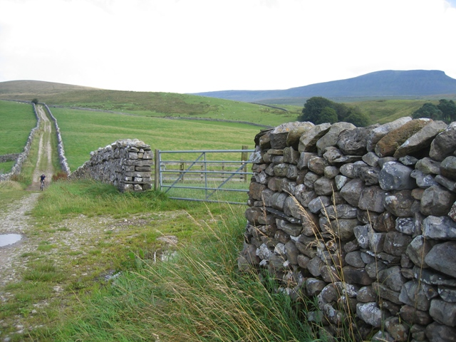 Harber Scar Lane and field gate