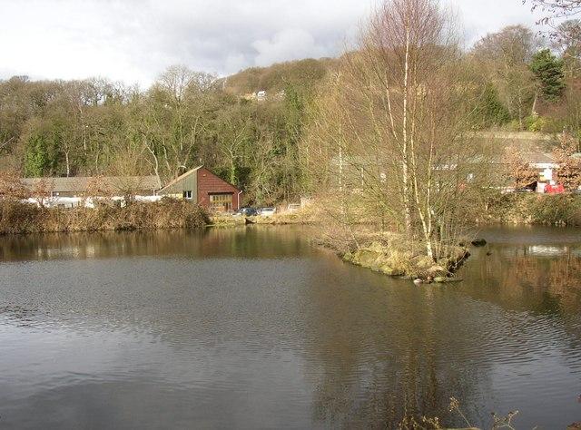 Millpond, Steps, Honley