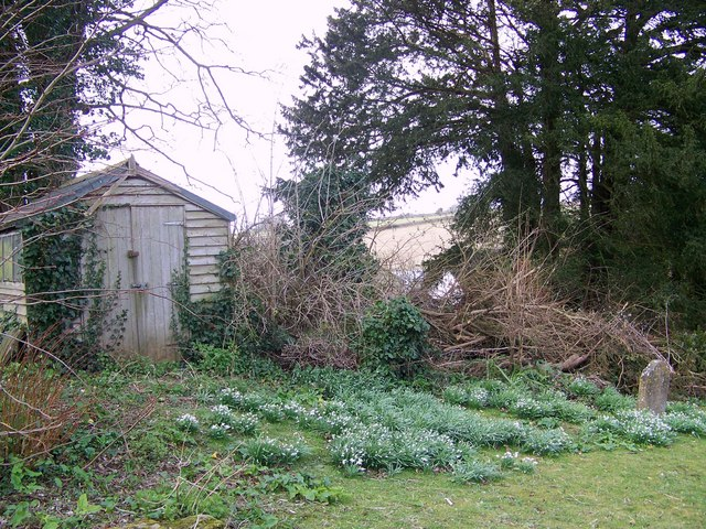 Shed in the Churchyard, Winterborne Whitechurch