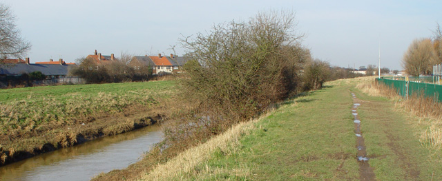 Footpath by Holderness Drain