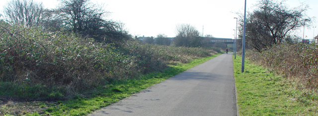 Cycle Track into Hull