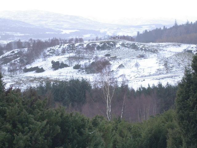 Wildlife Park in snow
