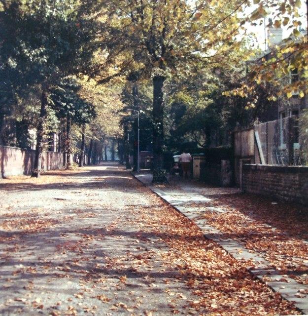 Wellington Road, Whalley Range, Autumn