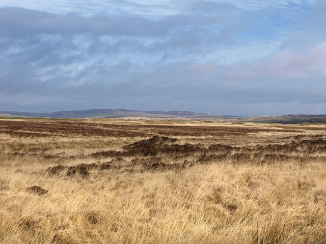 Open moorland near Airyolland