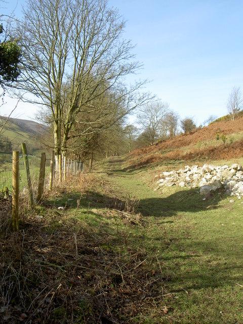 Footpath to Garth Farm