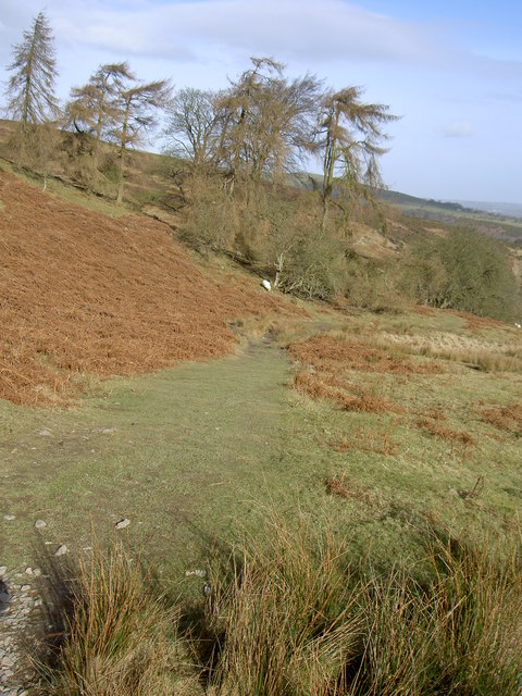 Looking down the Clwydian Way.