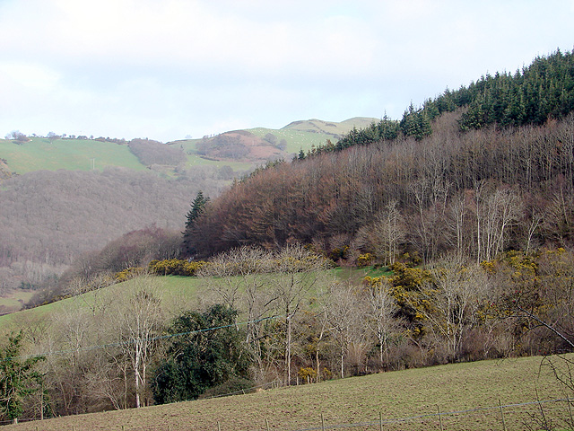 Route of Vale of Rheidol Railway