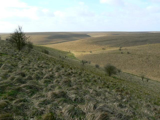 Water Dean Bottom, Salisbury Plain