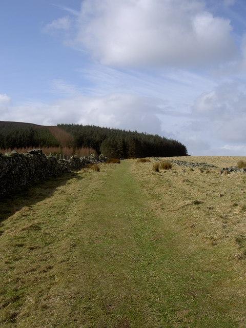 Bridleway to Moel Famau