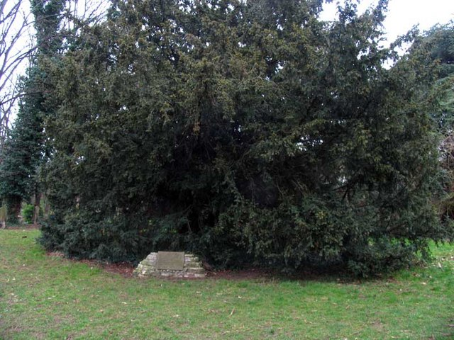 Plague pit in All Saints, Church Street, Isleworth, Mx TW7 6BE churchyard