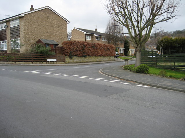 Hoyle Court Avenue