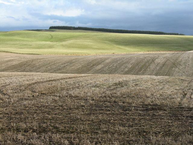 Farmland near Mount Lothian