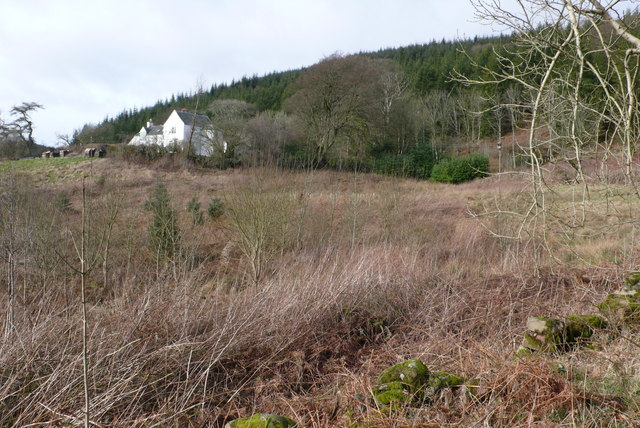Rough ground at Mochrum