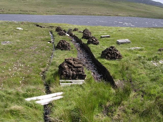 Fresh peat cuttings