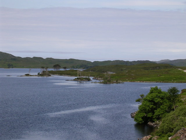 Loch Assynt, north shore.