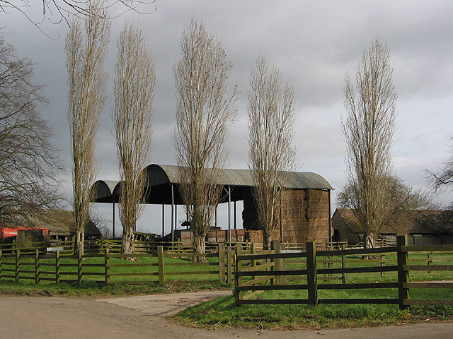 Dutch barns and a line of poplars