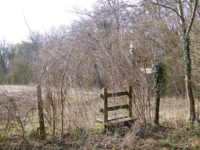 Footpath and stile, Knighton Wood
