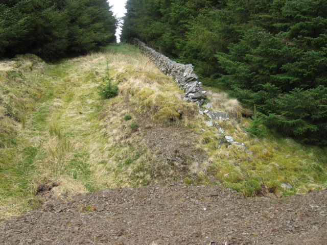 Old wall towards Rodger Law