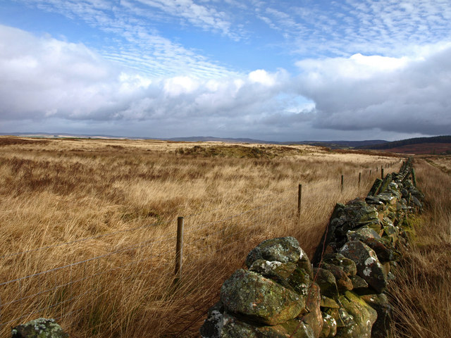 From the Southern Upland Way