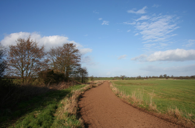 Gallops, north of Bankhouse Farm