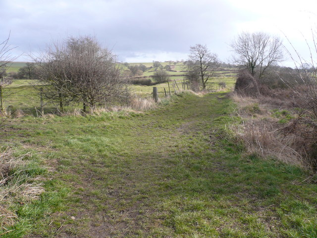 Footpath View near Carr Vale