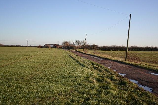 Fenland farm track