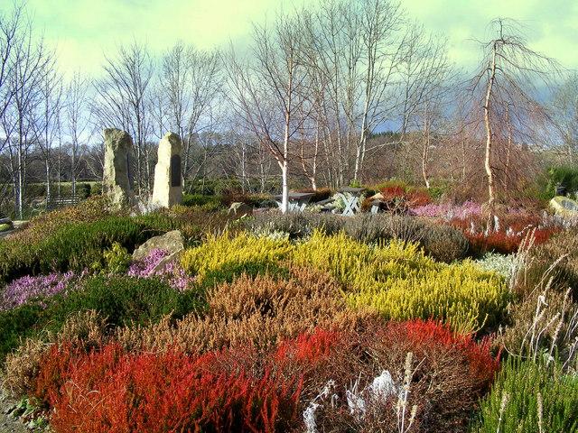 The Famous Fochaberians Garden