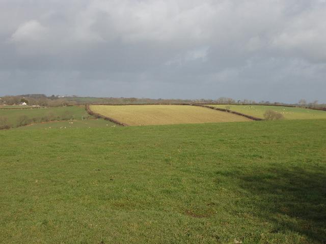 Fields by Higher Trossell