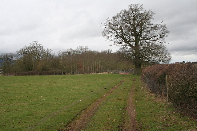 Track to Lower Hook