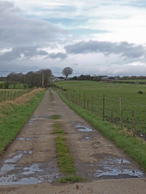 Concrete farm road