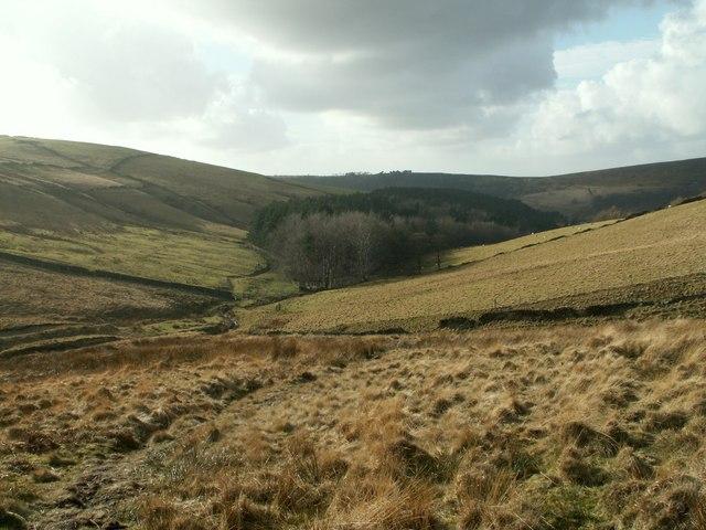 Upper Moor looking to Farlands Wood