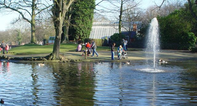 The Lake, Pearson Park