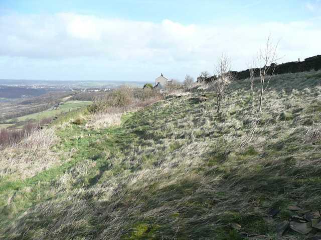 Rough pasture, Elland