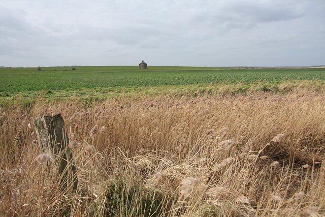 Felixstowe Marshes