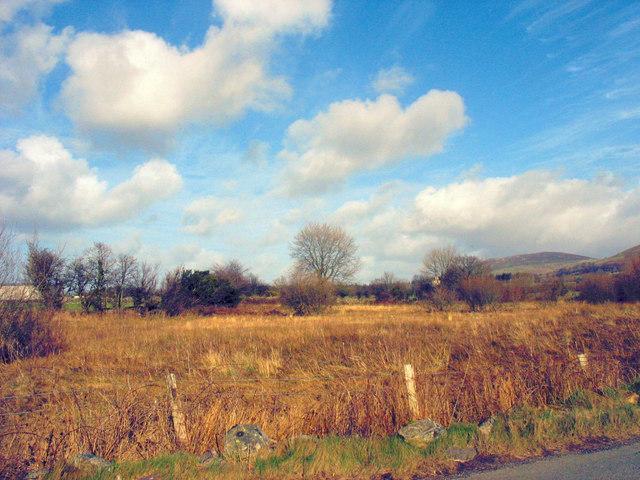 Wetlands alongside the Deiniolen road